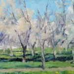 Spring Orchard, 11 x 14, $540.