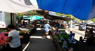 Shopping at the Quepos Market